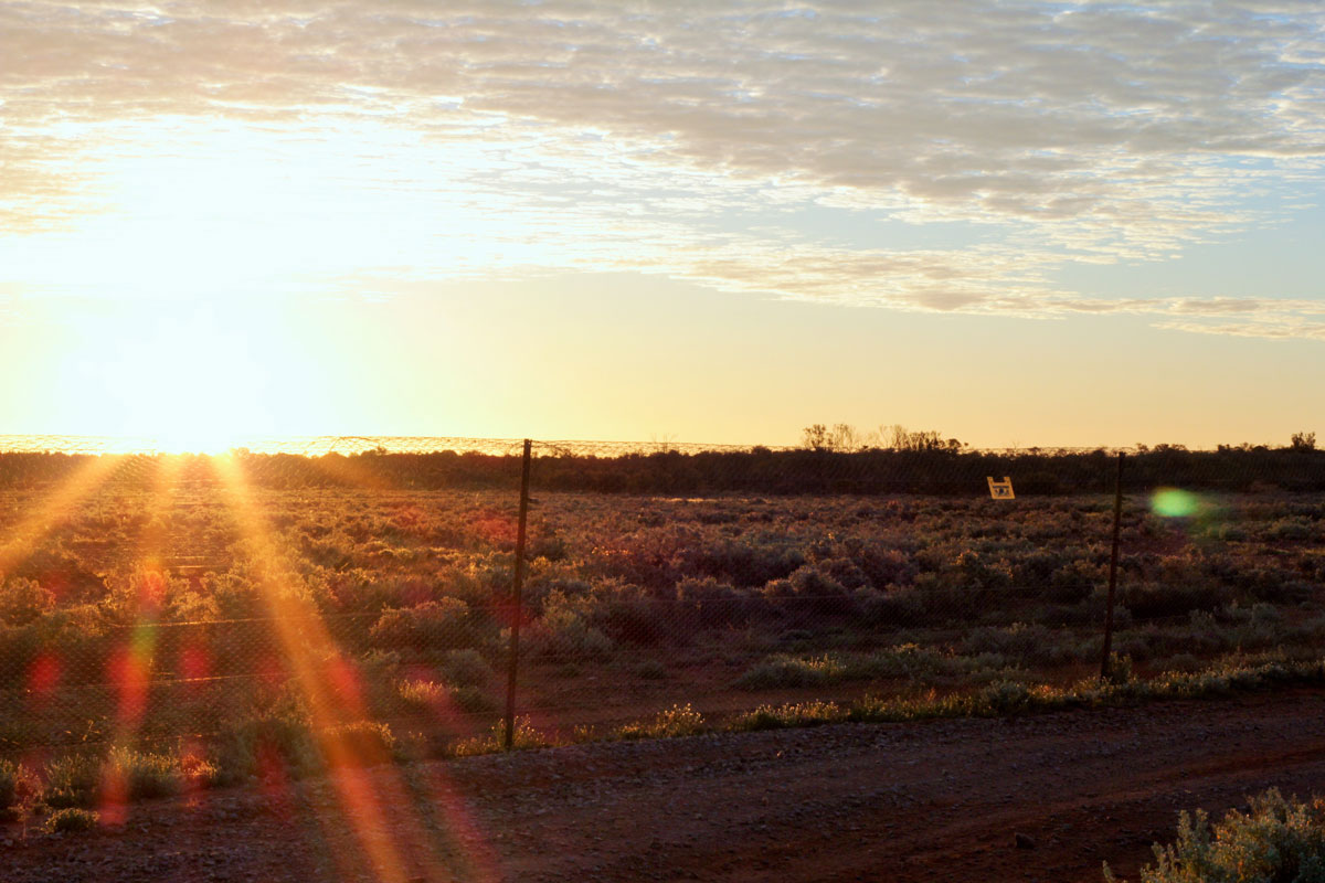 Scenery Sunset at Arid Recovery by Kerrie Thomas