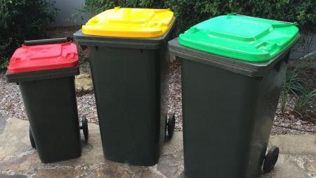 which bin