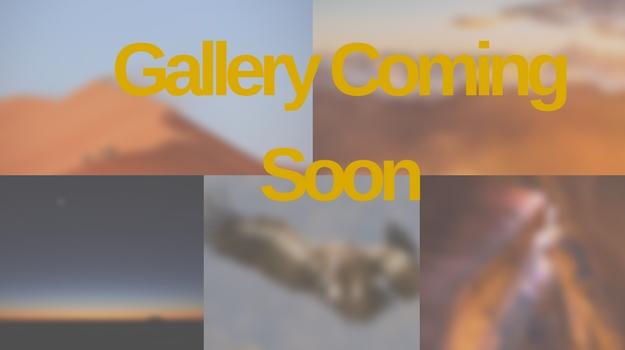 Gallery Coming Soon 2017